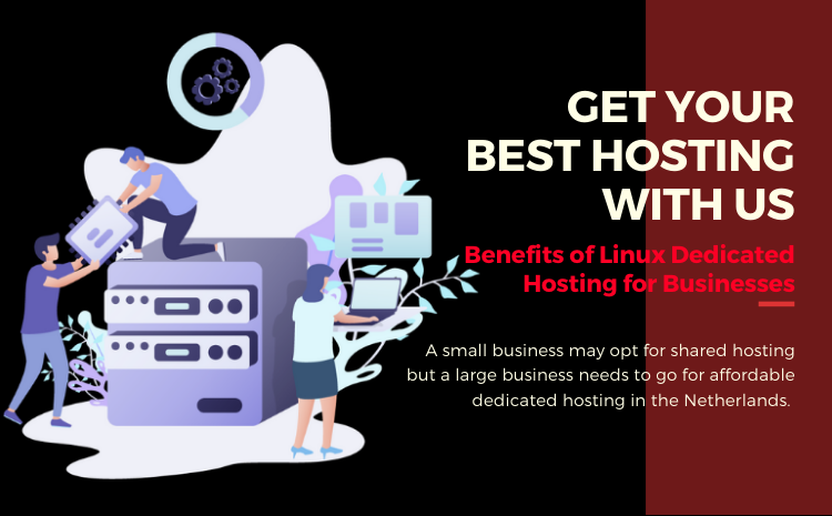 affordable dedicated servers in the Netherlands